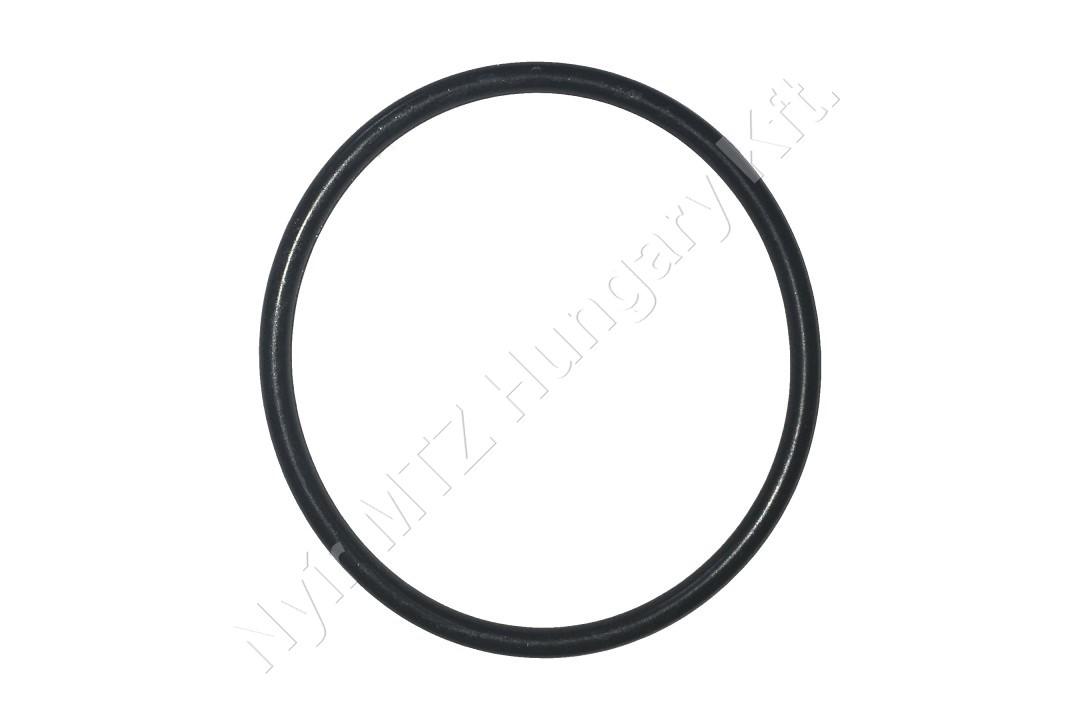Gumigyűrű 54x4 /forgócsap/